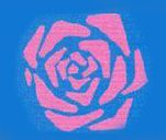 rose edit 2 2